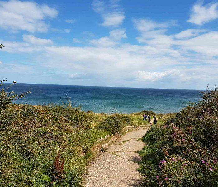 Dog Friendly: The Yorkshire Coast
