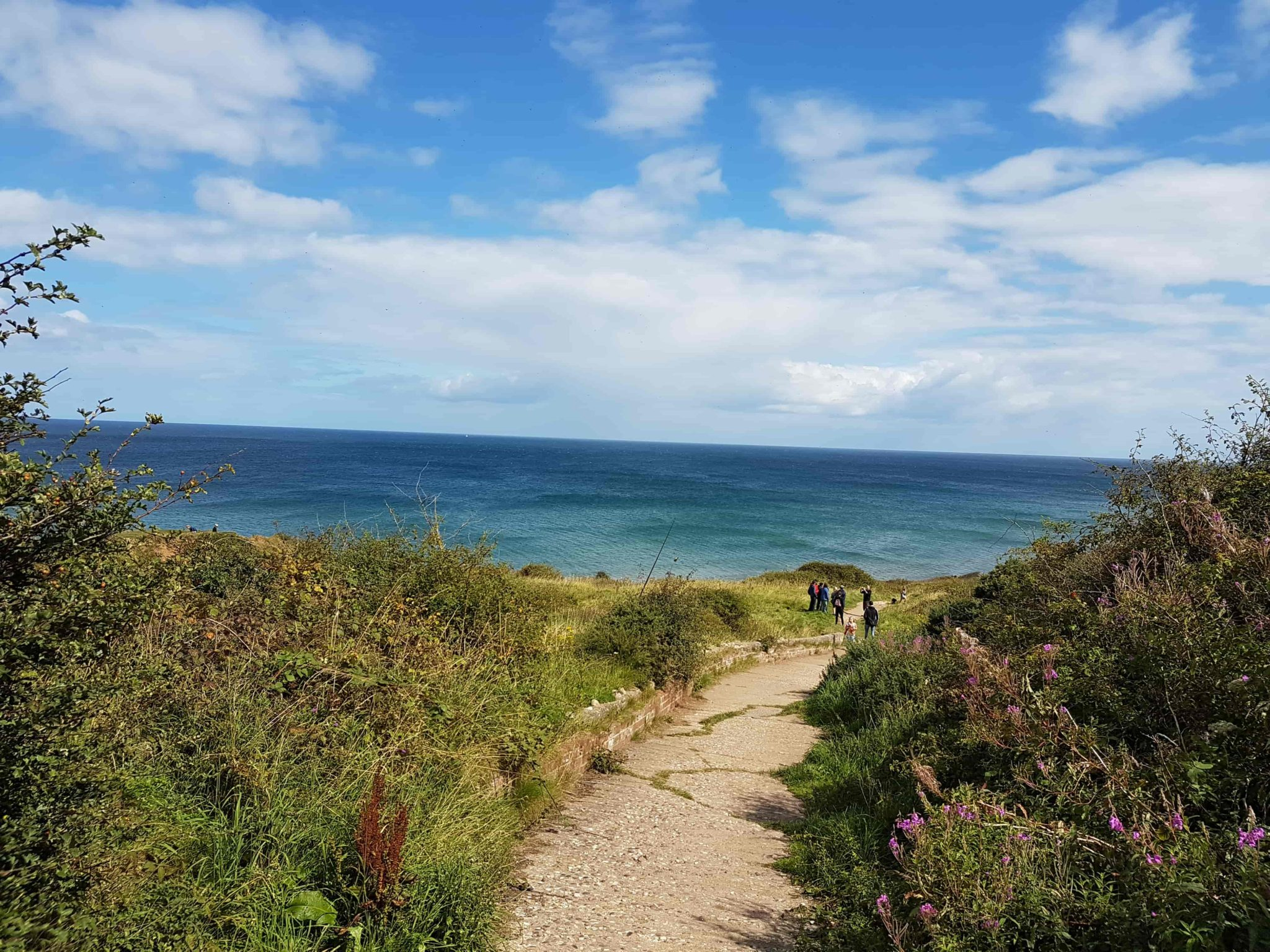 Dog Friendly: The Yorkshire Coast