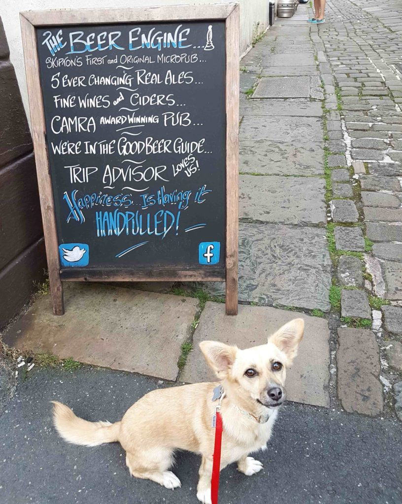 dog friendly micropub skipton
