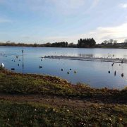 yeadon tarn morning