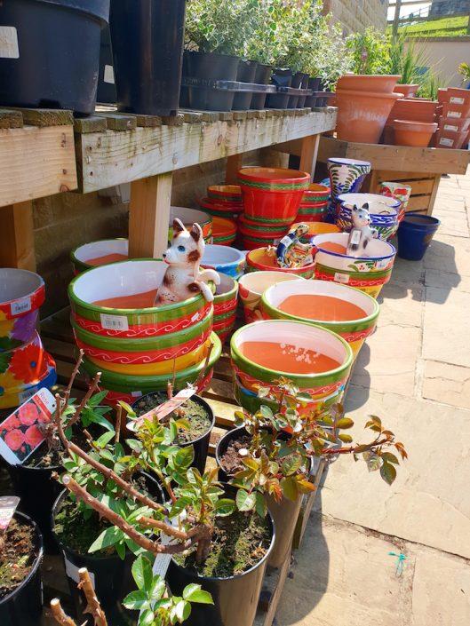 plant-pots-keelham