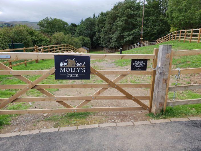 mollys-farm