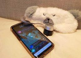 sleep mask, calm app, sleep balm